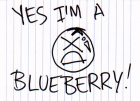 23 Dec 2010 - Blueberry