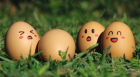 Egg Party
