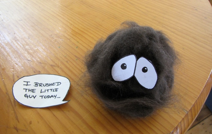 I Brushed The Little Guy Today...