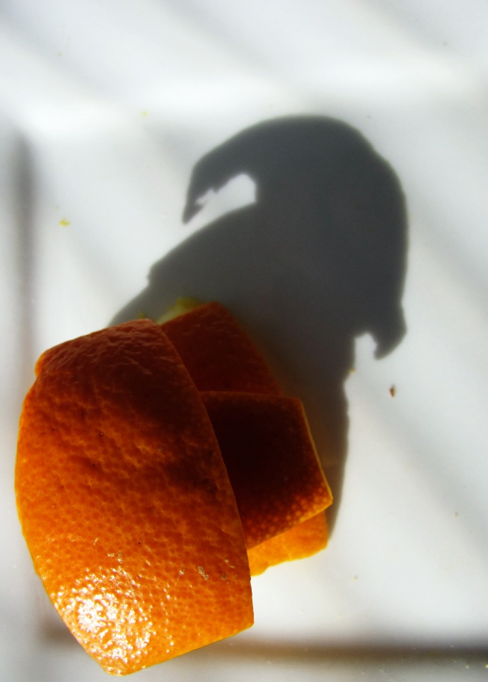 Mandarin Shadow (original)