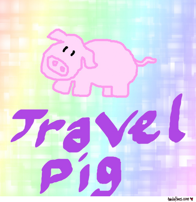 Travel Pig Portrait